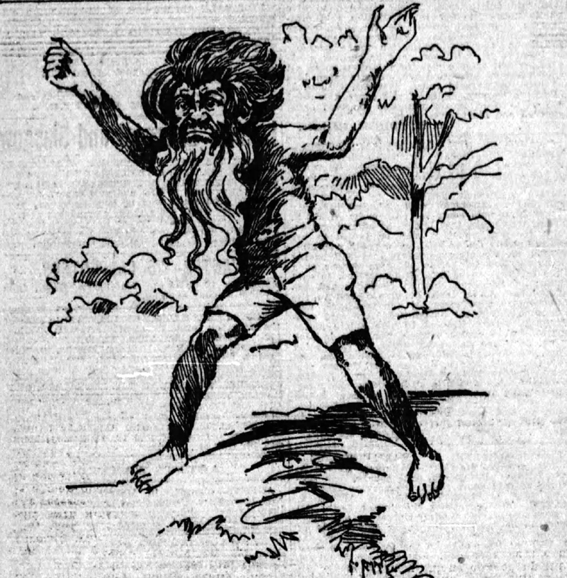 The Winsted Wild Man as seen in the 1895 Boston Post newspaper