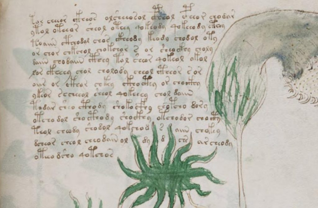 Excerpt from the Voynich Manuscript at Yale University's Beinecke Library