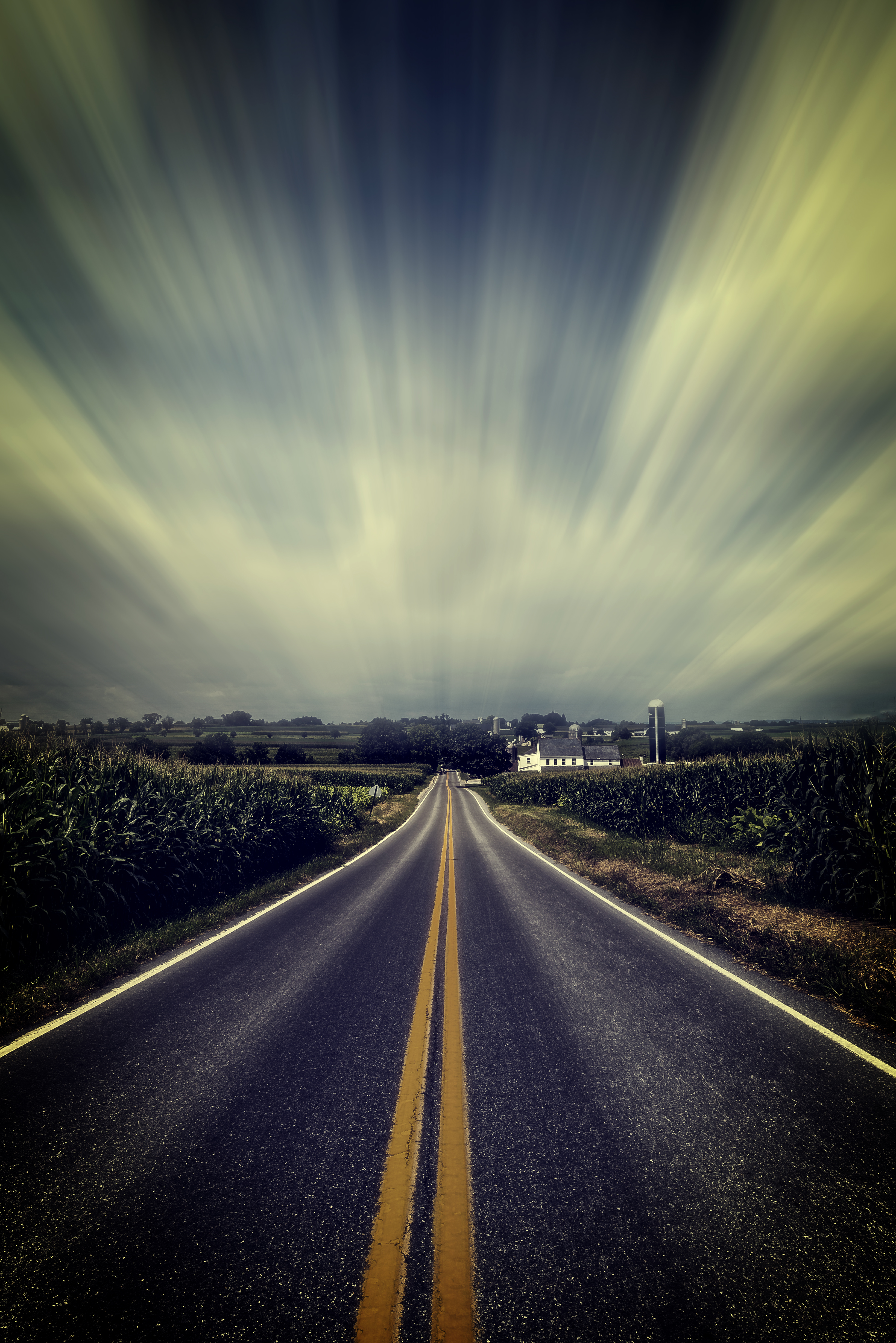 The Road by Frank Grace