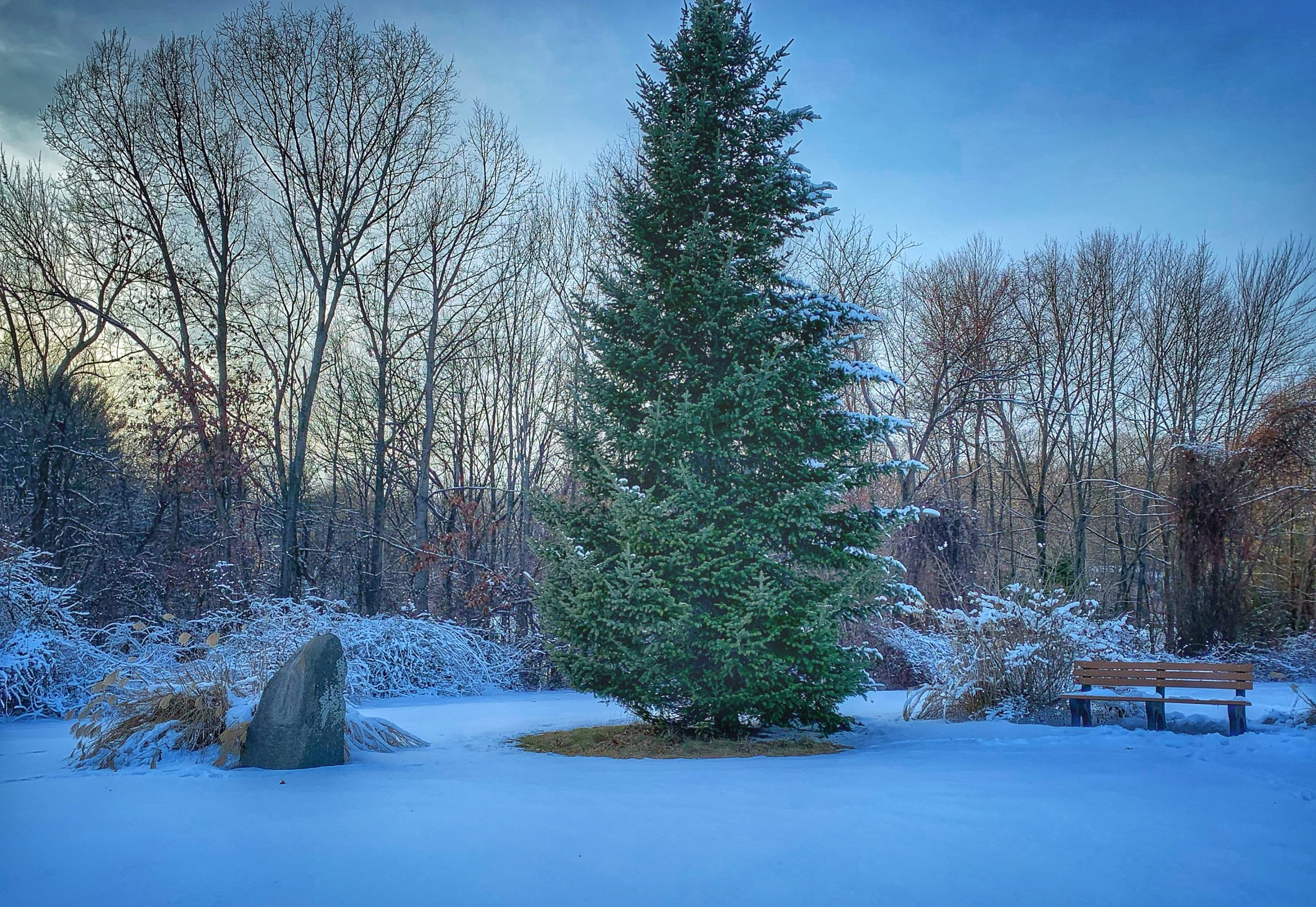 The site of New England's First Decorated Christmas Tree in Windsor-Locks, Connecticut. Photo by Jeff Belanger.