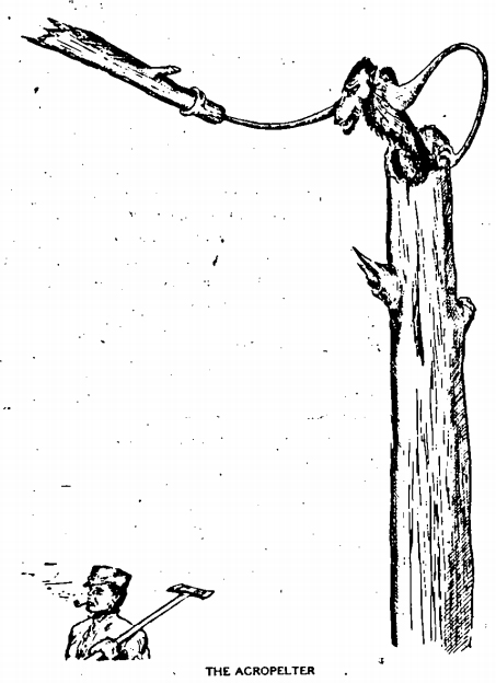 The Agropelter - from William T. Cox's 1910 book: Fearsome Creatures of the Lumberwoods.