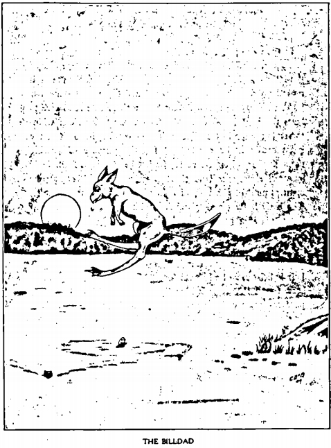 The Billdad - from William T. Cox's 1910 book: Fearsome Creatures of the Lumberwoods.