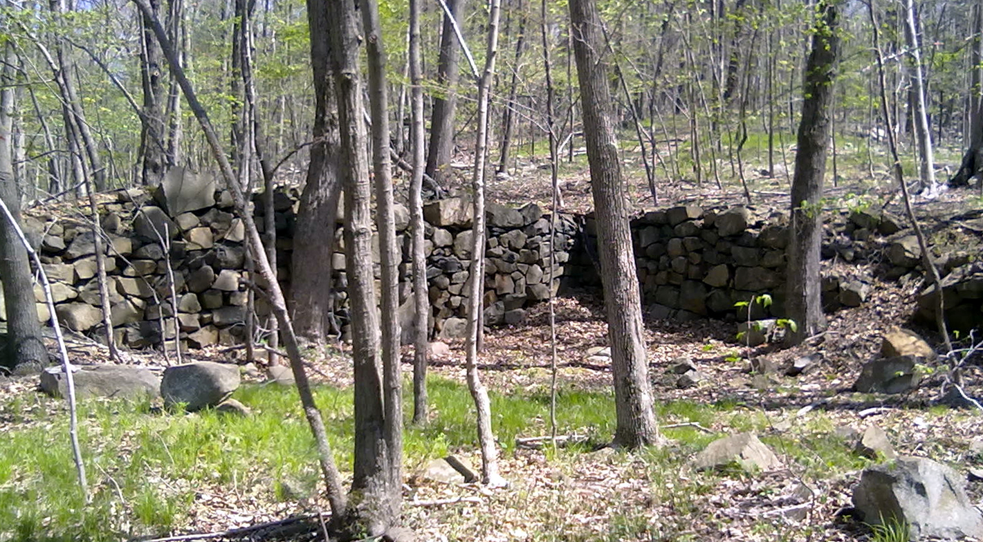 An old cellar hole along Downs Road.