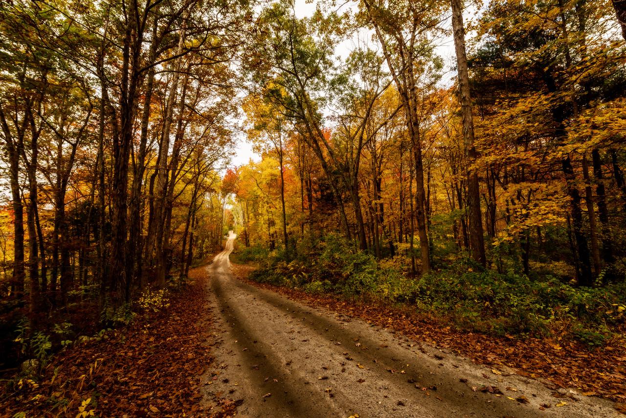 Tucker Hollow Road in Foster, Rhode Island. Photo by Frank Grace,